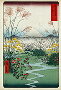 Hiroshige Prints - Otsuki Fields in Kai Province Print by Nomad Art And  Design
