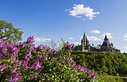 Ottawa Framed Prints - Ottawa Framed Print by Mircea Costina Photography