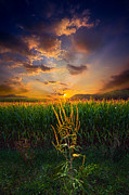 Phil Koch - Our Time Together