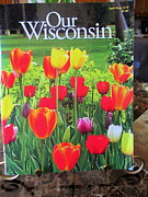 Kay Novy Framed Prints - Our Wisconsin Magazine Framed Print by Kay Novy