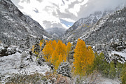 Ray Mathis - Ouray Fall Colors