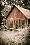 Shed Photos - Out by the Woodshed by Edward Fielding