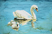 Swans... Paintings - Out for a morning swim by Diane Marcotte