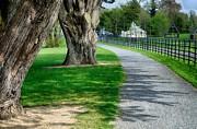 Martina Fagan - Out for a Stroll in Oldbridge Estate Meath