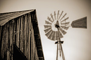 Del Rio Tx Prints - Out of Focus Print by Amber Kresge