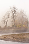 Autumn Photos - Out of The Mist by Marcia Colelli