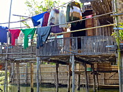 Bamboo House Photos - Out to Dry by Christine  Hall