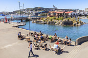 New Zealand Prints - Outdoor Cafe Wellington New Zealand Print by Colin and Linda McKie