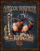 Montana Painting Framed Prints - Outdoor Traditions Elk Framed Print by JQ Licensing