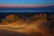 Sea Oats Photo Framed Prints - Outer Banks - Before Sunrise on Pea Island I Framed Print by Dan Carmichael