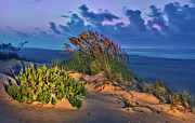 Sea Oats Framed Prints - Outer Banks - Ocracoke Sand Dunes Oats Sunrise Framed Print by Dan Carmichael