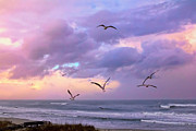 Mary Almond - Outer Banks Sunrise