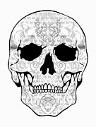 Scull Framed Prints Prints - Outline Scull Print by Mauro Celotti
