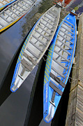 Life Line Prints - Outrigger Canoe Boats Print by Ben and Raisa Gertsberg