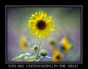 Sarasota Digital Art Posters - Outstanding in the Field Poster by Barbara Chichester