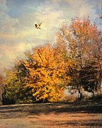 Autumn Landscape Framed Prints - Over the Golden Tree Framed Print by Jai Johnson