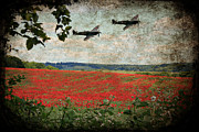Ian Jeffrey - Over The Poppy Field