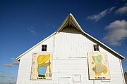 Painted Barn Quilt Posters - Overall Sam and Sunbonnet Sue Barn Quilts Poster by Amelia Painter