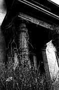 Connecticut Drawings Prints - Overgrown Porch Print by David M Davis