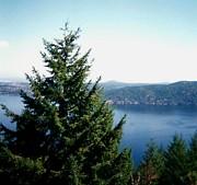 Gail Matthews - Overlooking Lake Windermere