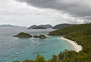 Thomas Pyrography Metal Prints - Overlooking Trunk Bay Beach Metal Print by Eyzen Medina