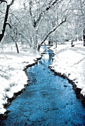 Overnight Snow In Edgemont Park Print by Kellice Swaggerty