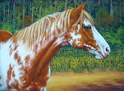 Featured Pastels Posters - Overo Paint Horse-Colorful Warrior Poster by Margaret Stockdale