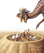 Oviraptor And Nest Print by Spencer Sutton