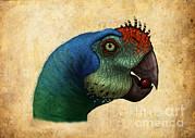 Oviraptor Head Detail Print by Alvaro Rozalen