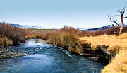 Owens River Metal Prints - Owens in winter Metal Print by Pismopup Photography