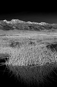 Dry Lake Photos - Owens Lake and the High Sierra by Jim West