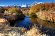 Owens River Metal Prints - Owens River and Eastern Sierra Nevada Mountains Metal Print by Gary Whitton