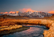 Owens River Metal Prints - Owens River Dawn Metal Print by David  Forster