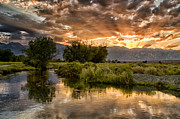 River. Clouds Posters - Owens River Sunset Poster by Cat Connor