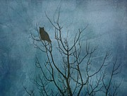 Diane Alexander - Owl at Dawn - Teal