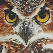 Nocturnal Animal Print Framed Prints - OwL Framed Print by Cherise Foster
