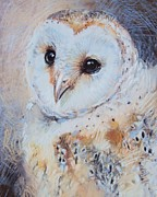 Owl Pastels - Owl Chick by Tonja  Sell