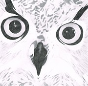 Nancy Tellier - Owl Close Up