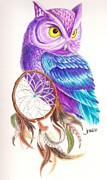 Fuschia Drawings Posters - Owl Dreamcatcher Poster by Jane Bush