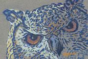 Suzie Majikol-Maier - Owl Eyes