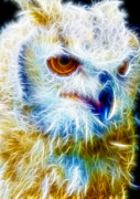 Manley Prints - Owl - Filter Effect Manipulation Print by Gina Manley