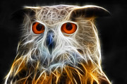 Electrical Digital Art Framed Prints - Owl fractal art Framed Print by Matthias Hauser