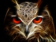 Purchase Digital Art Posters - Owl - fractal artwork Poster by Lilia D