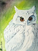 LeAnne Sowa - Owl let