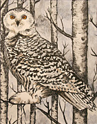 Browns Painting Posters - Owl Poster by Monica Warhol
