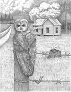 David Gallagher - Owl on a Post