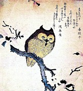 Woodcut Paintings - Owl on Tree Branch by Pg Reproductions