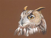 Tonya Butcher Framed Prints - Owl Painting Framed Print by Tonya Butcher