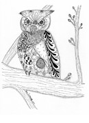 Original Pen And Ink Drawing Prints - Owl Sittin Pretty Print by Paula Dickerhoff