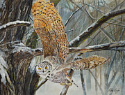 Alvin Hepler - Owl Taking Off